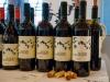 Vinessio Weinmesse Fürth 2017_016